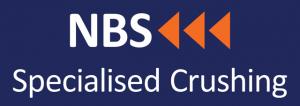 NBS_logo_full_rgb300